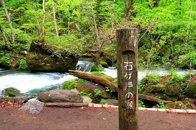 奥入瀬渓流-10