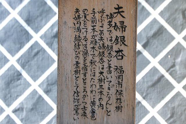 櫛田神社-6