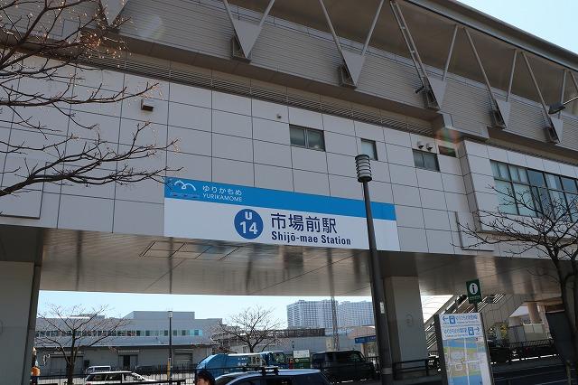 豊洲市場-1