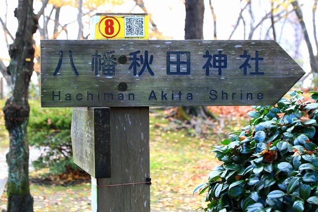 秋田-153