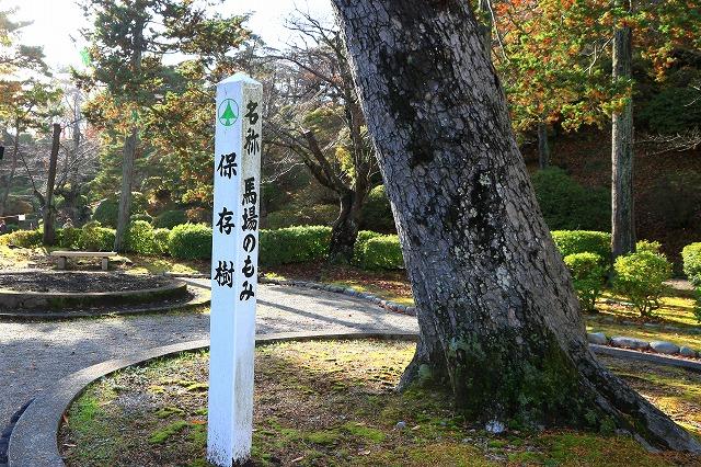 秋田-169