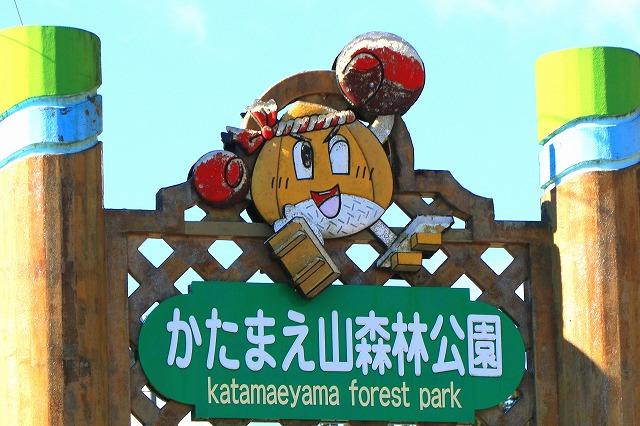 田沢湖-54