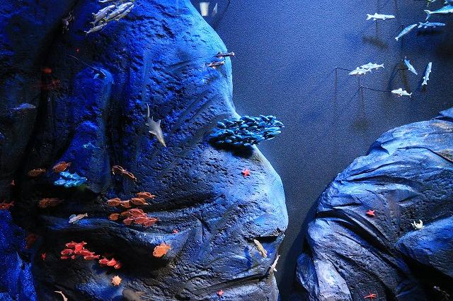 深海水族館-37
