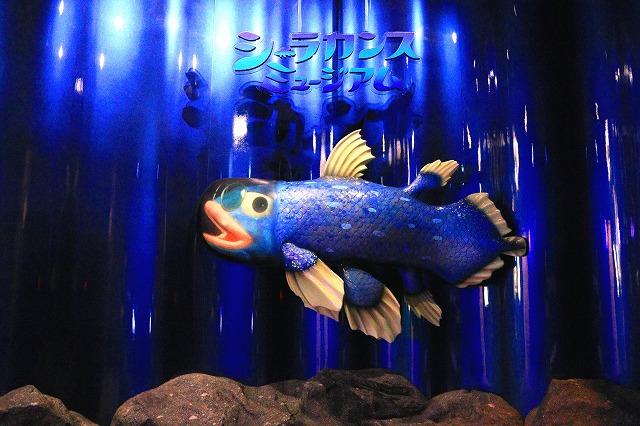 深海水族館-74