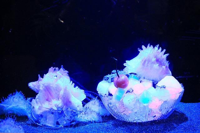 深海水族館-100