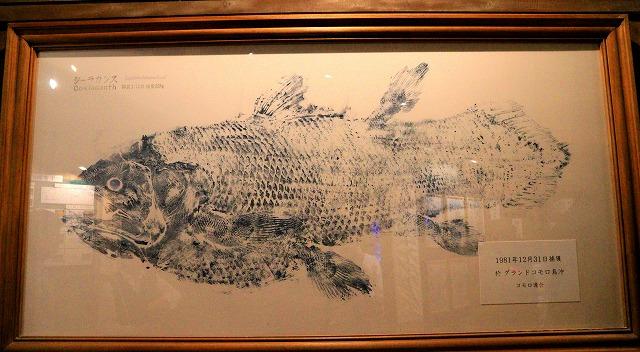 深海水族館-136