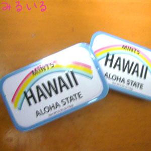ハワイのお土産♪ 手作りアクセサリー工房みるいる