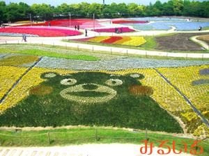 九州の、いや日本の超有名キャラクター、花で登場♪|手作りアクセサリー工房みるいる