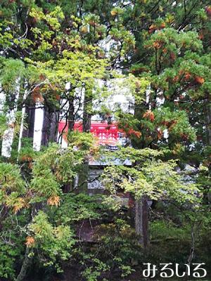 高野山 壇上伽藍をここから撮ってみる|手作りアクセサリー工房みるいる