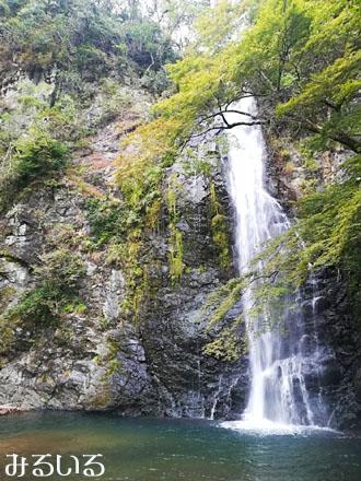 2年ぶりくらいに箕面大滝の天然のマイナスイオンを浴びに♪|手作りアクセサリー工房みるいる