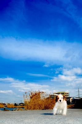 20120119_114311.jpg