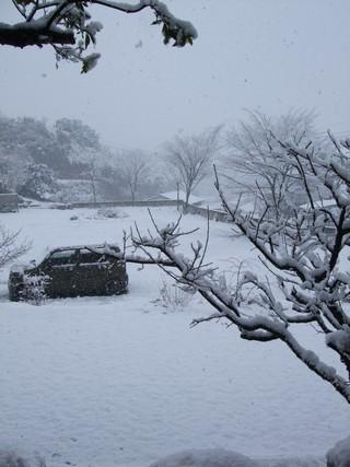 2010.12.26012.jpg