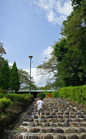 2011_09_10_4378.jpg