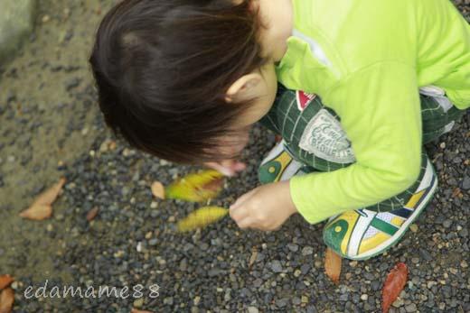 2011_11_05_5590.jpg