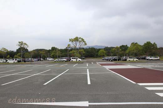 2011_11_05_5642.jpg