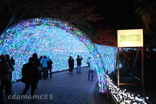 2011_11_18_6064.jpg