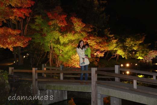 2011_11_18_6080.jpg