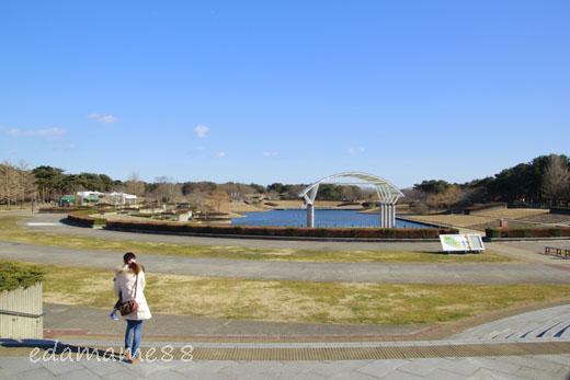 2012_01_07_6447.jpg
