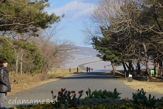 2012_01_07_6483.jpg