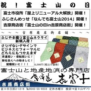 富士山 東海道表富士 グッズ 土産 なんでもふじさん 立体塗り絵