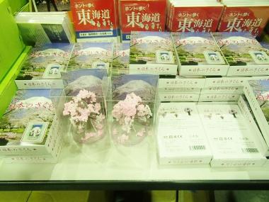 富士山 専門店 東海道表富士 西川卯一 村山登山道 ガイド 海から登山 桜咲く