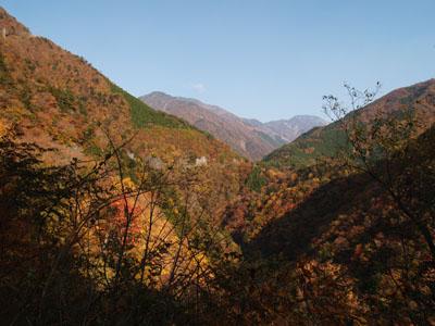 県道60号線から見る紅葉