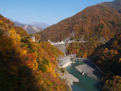 畑薙第一ダムは紅葉真っ盛りでした♪