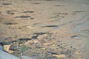 増水で堆積した泥に侵食地形