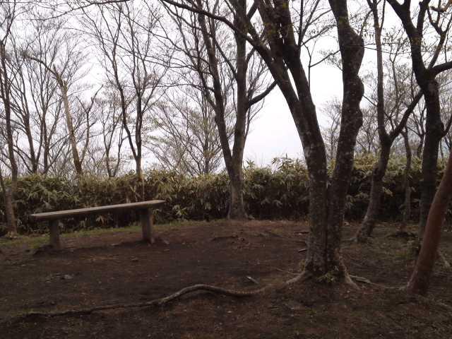 竜ヶ岳登山5