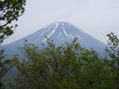 竜ヶ岳富士山1