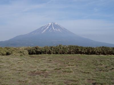花曇りの富士山