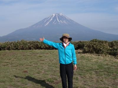 富士山はこちら