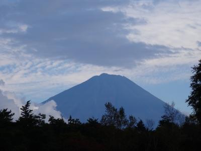 野鳥の富士山1