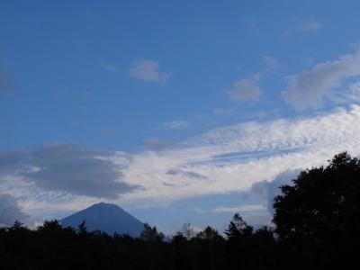 野鳥の富士山2