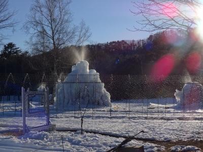 野鳥の森樹氷まつり2