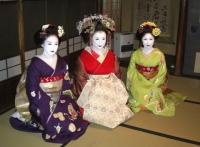 太夫さんと先斗町の舞妓ちゃん