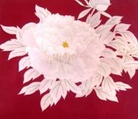 白牡丹の咲く赤い帯