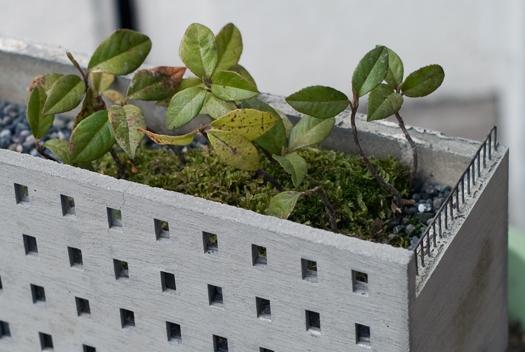 mado planter