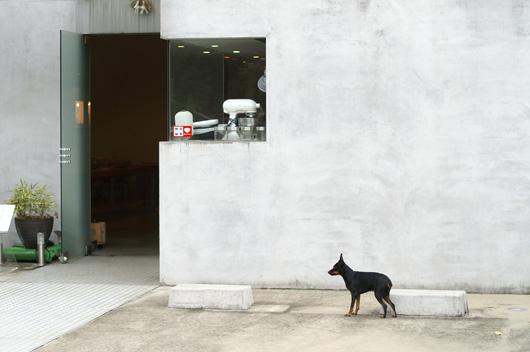 A WOMB + awomb studio