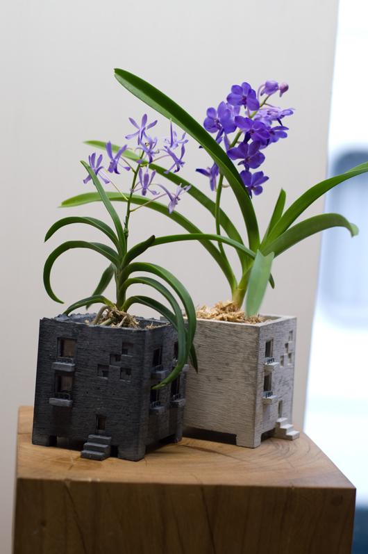 KUKKAさん植物