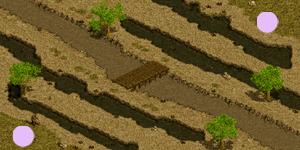 湿地の戦場