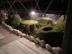 擬岩・擬木