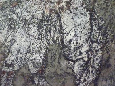 P1370052.JPG