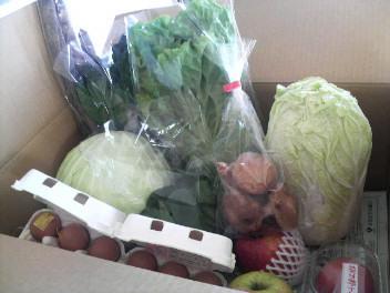 野菜お取り寄せ