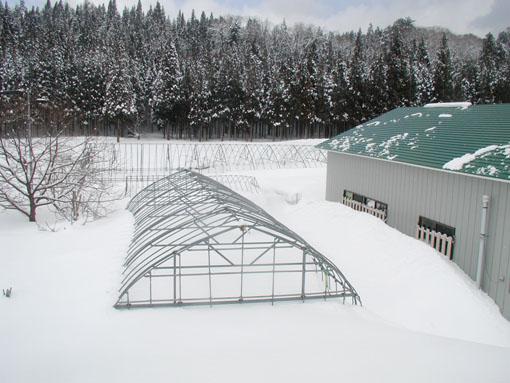 2012/2/26の雪