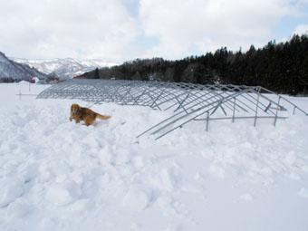 2005/3/6の雪