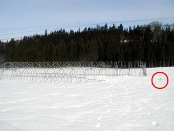 2006/2/21の雪