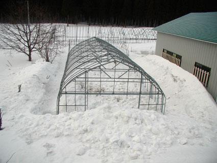 雪掘り後3.18