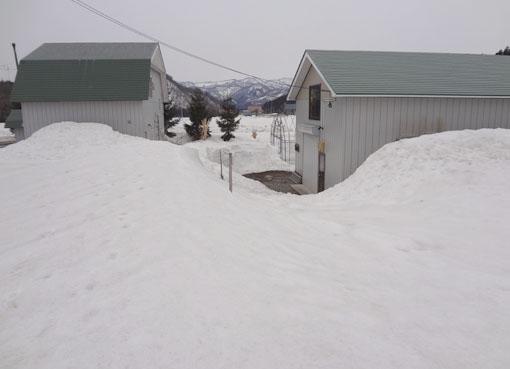 3月31日の残雪