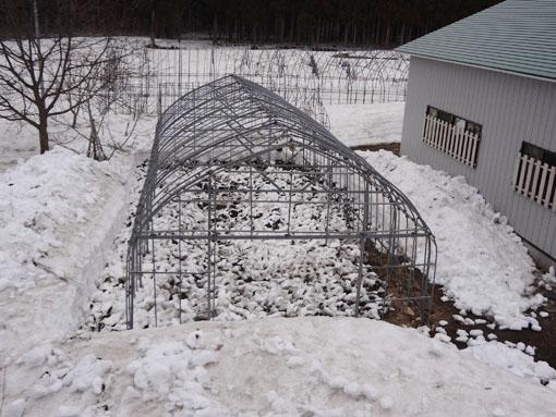 ハウス除雪1